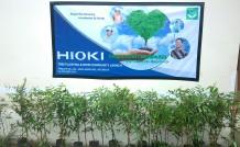 Hioki Green Point